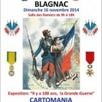 affiche Cartomania - 16 novembre 2014 - 31700 Blagnac